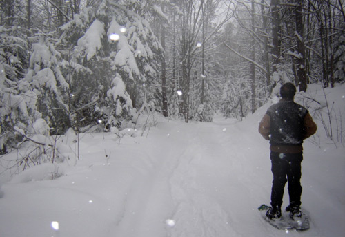 Snow shoeing in Sauble Beach!